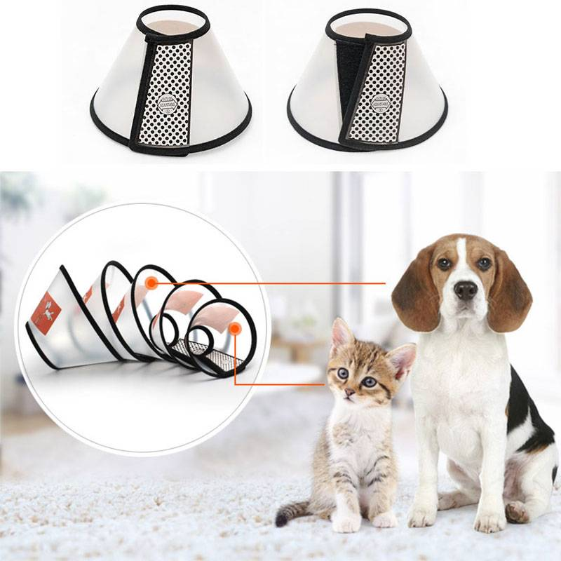 Durable Protective Collar for Pet